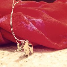 This Elephant Charm by Stella & Dot represents strength and love of family. Your new lucky charm!