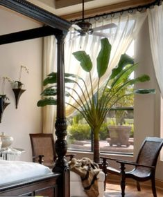 Tropical Inspiration Find your paradise at our showroom today! West Indies Decor, West Indies Style, British West Indies, Estilo Tropical, Tropical Style, Tropical Decor, British Colonial Bedroom, British Colonial Style, French Colonial