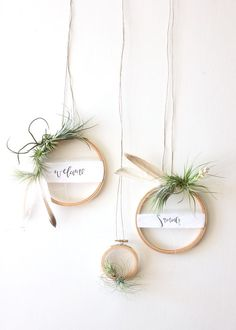 DIY Ideas: DIY Tutorial Summer Air Plant Wreath for Weddings and Cocktail Parties by A Fabulous Fete for Oh So Beautiful Paper
