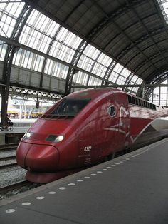 High speed train to Amsterdam Rail Transport, Public Transport, Thalys Train, Europe Train, France Train, High Speed Rail, Bonde, Electric Train, Speed Training