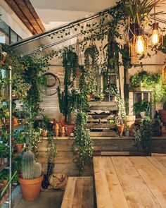 15 Best Amazing Indoor Jungle Decor Ideas to Freshen Your Home Interior Jungle House, Jungle Room, Room With Plants, Plant Rooms, Green Rooms, Aesthetic Rooms, Minimalist Home, Plant Decor, Indoor Plants
