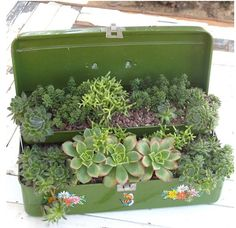 Another Toolbox Planter Idea