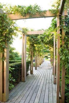 Van Raaijen Hoveniers - tuinaanleg landelijke tuin - tuinontwerp Robert Broekema - fotografie Maayke de Ridder