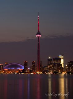 The CN Tower, Toronto Skyline at Night Vacation Destinations, Vacation Spots, Vacation Ideas, Places To Travel, Places To Visit, Nostalgia, Toronto Skyline, Toronto Canada, Canada Eh