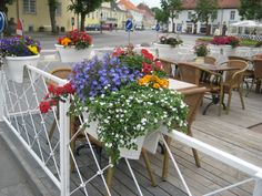 Pub Vaekoda (Tallinna 3, Kuressaare) has some of the best and most colorful summer flowers at their terrace