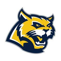 Joseph Wheeler High School Wildcats, Marietta GA.