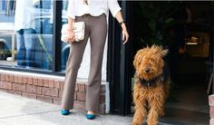 Boot-Flare+|+Taupe+Dress+Pant+Yoga+Pants