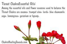 Essentail oils to balance the Throat Chakra on Amazon: https://www.amazon.com/s/ref=as_li_ss_tl?url=search-alias=aps&field-keywords=throat+chakra+essential+oil&rh=i:aps,k:throat+chakra+essential+oil&linkCode=sl2&tag=alcoholblog-20&linkId=95404562ebea38059ff64810ca34e0a4&utm_content=bufferaf44f&utm_medium=social&utm_source=pinterest.com&utm_campaign=buffer