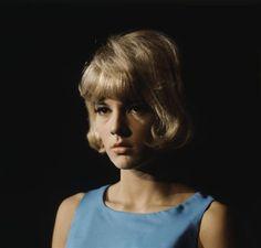 Sylvie Vartan - 1960 © Sam Lévin, Dist. RMN