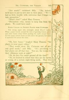 The Mary Frances Garden Book. by Jane Eayre Fryer. Phil,. 1916. 1st.ed. illus.