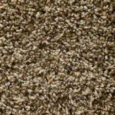 Shameless I in Sahara Carpet Samples, How To Dry Basil, New Homes, Herbs, Flooring, House, Ideas, Design, Home