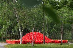 Livescape — Cone Garden Bocksili