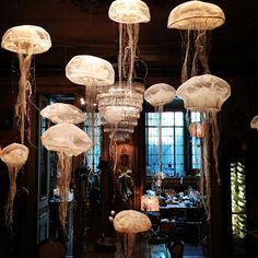 Les méduses de Vox Populi mariées avec un autre luminaire