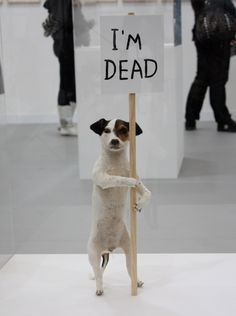 David Shrigley - Brain Activity exhibition at the Hayward Gallery