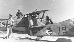 Fiat CR.32, 79-5, 79^ Squadriglia, Campoformido, 1938 Ww2 Aircraft, Military Aircraft, Kingdom Of Italy, Italian Air Force, Old Planes, National History, Royal Air Force, World War Two, Fiat