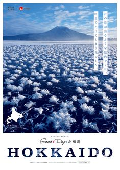 第67回結果発表 Japan Design, Web Layout, Lettering Design, Graphic Design Inspiration, Nature Photos, Packaging Design, Concept Art, Infographic, Graphics