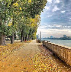 Bratislava, Danube River, European Countries, Czech Republic, Railroad Tracks, Rest, Walking, Interior Design, Nice