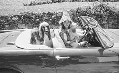 © Celebrity Pets - On the French Riviera in the 50s and 60s by Edward Quinn, published by teNeues, www.teneues.com. A Miniature Poodle and an Afghan Hound in the Alfa Romeo of David Niven and a special hat for his Swedish wife Hjordis Tersmeden. Saint-Jean-Cap-Ferrat 1961, Photo © 2014 edwardquinn.com. All rights reserved.