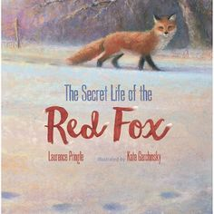 With their repeated sightings, a curiosity is growing.  The Secret Life of the Red Fox (Boyd Mills Press, an imprint of Highlights, March 7, 2017) written by Laurence Pringle with illustrations by Kate Garchinsky is an outstanding exploration of the days in the life of a red fox through several seasons.