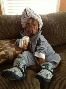 """""""This morning is simply not going to happen, no matter how hard I try."""" 