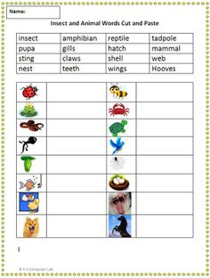 Cut and Paste Animal Vocabulary 2