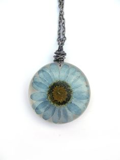 Just purchased this. Very excited about it!Real Daisy Necklace - Pressed Flower Jewelry - Blue Daisy - Resin Necklace -  Wire Wrapped Pendant - Daisy in Resin on Etsy, $12.50
