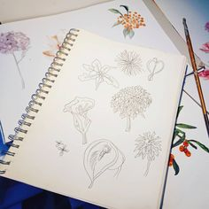 This is how my designs start, not digitally but by hand from flowers I see in the fields on my artwalks or bouquet. . . My 'Painterly Floral' depicted in my recent posts started just like this; I use lots of different art materials to create my perfect representation for me but mostly I use watercolours, acrylics and graphic pens, but aways sketching first, and my first love, art is organic and I create organic art! 💚♻️🖌️🎨 . Today I am in the studio, looking at my designs and drawings to…