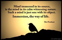Mind immersed in its source, is the mind in its calm witnessing nature. Such a mind is just one with its object. Immersion, the way of life. ~ Shri Prashant #ShriPrashant #Advait #mind #source #immersion Read at:- prashantadvait.com Watch at:- www.youtube.com/c/ShriPrashant Website:- www.advait.org.in Facebook:- www.facebook.com/prashant.advait LinkedIn:- www.linkedin.com/in/prashantadvait Twitter:- https://twitter.com/Prashant_Advait