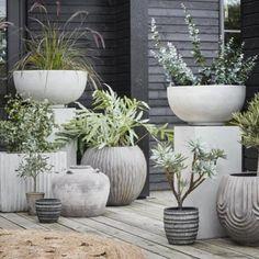 Large Plant Pots, Indoor Plant Pots, Large Planters, Faux Olive Tree, Concrete Plant Pots, Clay Flower Pots, Appartement Design, Artificial Plants, Garden Furniture