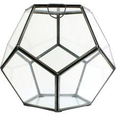 Dot & Bo Pentagonal Terrarium (€59) ❤ liked on Polyvore featuring home, home decor, floral decor, succulent terrarium, contemporary home decor and geometric terrarium