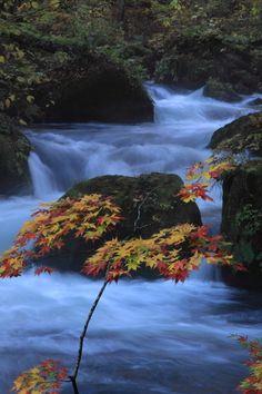 Oirase stream, Aomori, Japan: photo by kaji1031