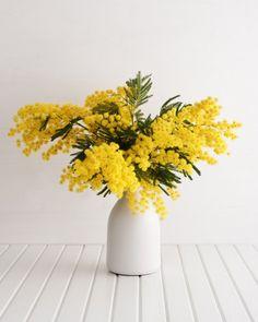 5 astuces pour réutiliser des pétales de fleurs