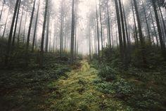 Unknown Road. www.regnumsaturni.com #landscape #travel #nature #explore #outdoors #wanderlust #fernweh #photography