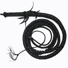 Shaolin Long Leather Whip | Kung-Fu Weapons | Pinterest