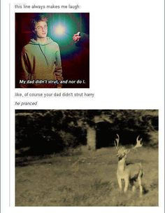 OH MY GERD. THIS. PERFECTION. | Harry Potter | Severus Snape | James Potter | prance | strut | Prongs | humor