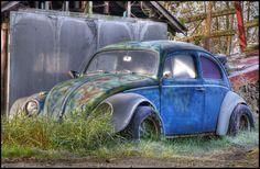 Frosty Bug by Craig MacIntosh, via 500px