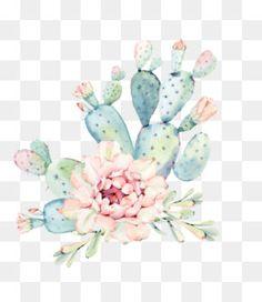Green Plants, Cactus Plants, Pink Wallpaper, Iphone Wallpaper, Cactus Png, Watercolor Flowers, Watercolor Paintings, Purple Succulents, Vector Flowers