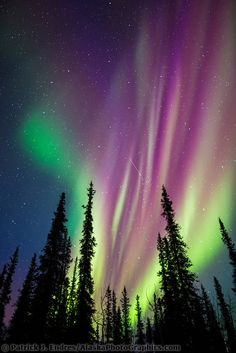 Northern Lights - Images | AlaskaPhotoGraphics.com