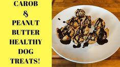 D.I.Y HEALTHY DOG TREATS! CAROB & PEANUT BUTTER MINI DONUTS!