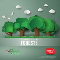 Protect Our Nature and Nature will Protect You.  International Day of Forests 2018  #internationalforestsday #forestryday #forestsday #keralaplantations #tanishindia