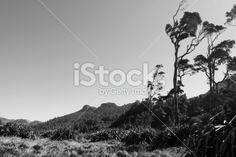 Wild West Coast Landscape Royalty Free Stock Photo
