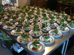 Plated and ready to go, here is the back kitchen at the Mercer Island Beach Club on the occasion of a beautiful ARISTA wedding. #arista #catering #Seattle #salad (888)98-CATER