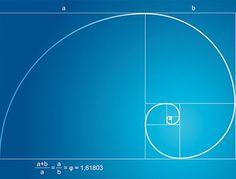 Золотое сечение и пропорции Фибоначчи : Fototips.ru — Уроки и статьи о фотографии и обработке фото