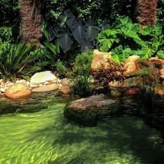 Arquiteta paisagista🍀Landscape architect Paisagismo, jardins, meus trabalhos e viagens🍃Landscape, gardens, my work and trips🌿 São Paulo-SP Brasil💚: