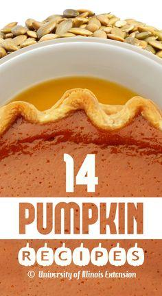 14 Delicious Pumpkin Recipes for the Holiday Season!