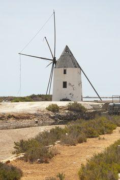 Molino. San Pedro del Pinatar, Murcia