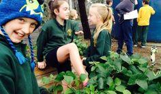 Eppalock Primary School | Enviroweek