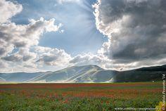 Castelluccio di Norcia, Parco Nazionale dei Monti Sibillini, Umbria, Italia.