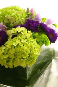 flowers purple/green