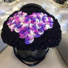 Imagine flowers, rose, and black